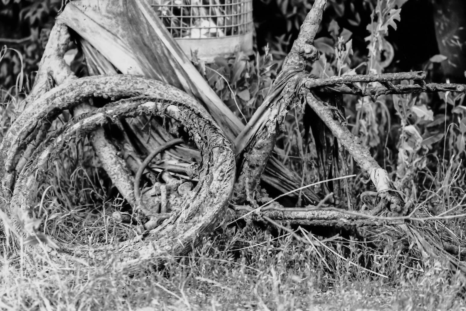 Aus dem Bach gezogenes Fahrrad in Harreshausen am Wehr