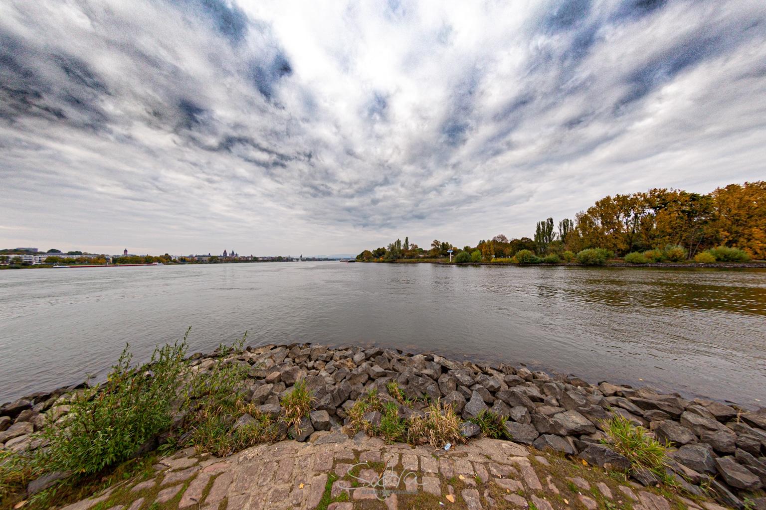 Mainmündung in den Rhein