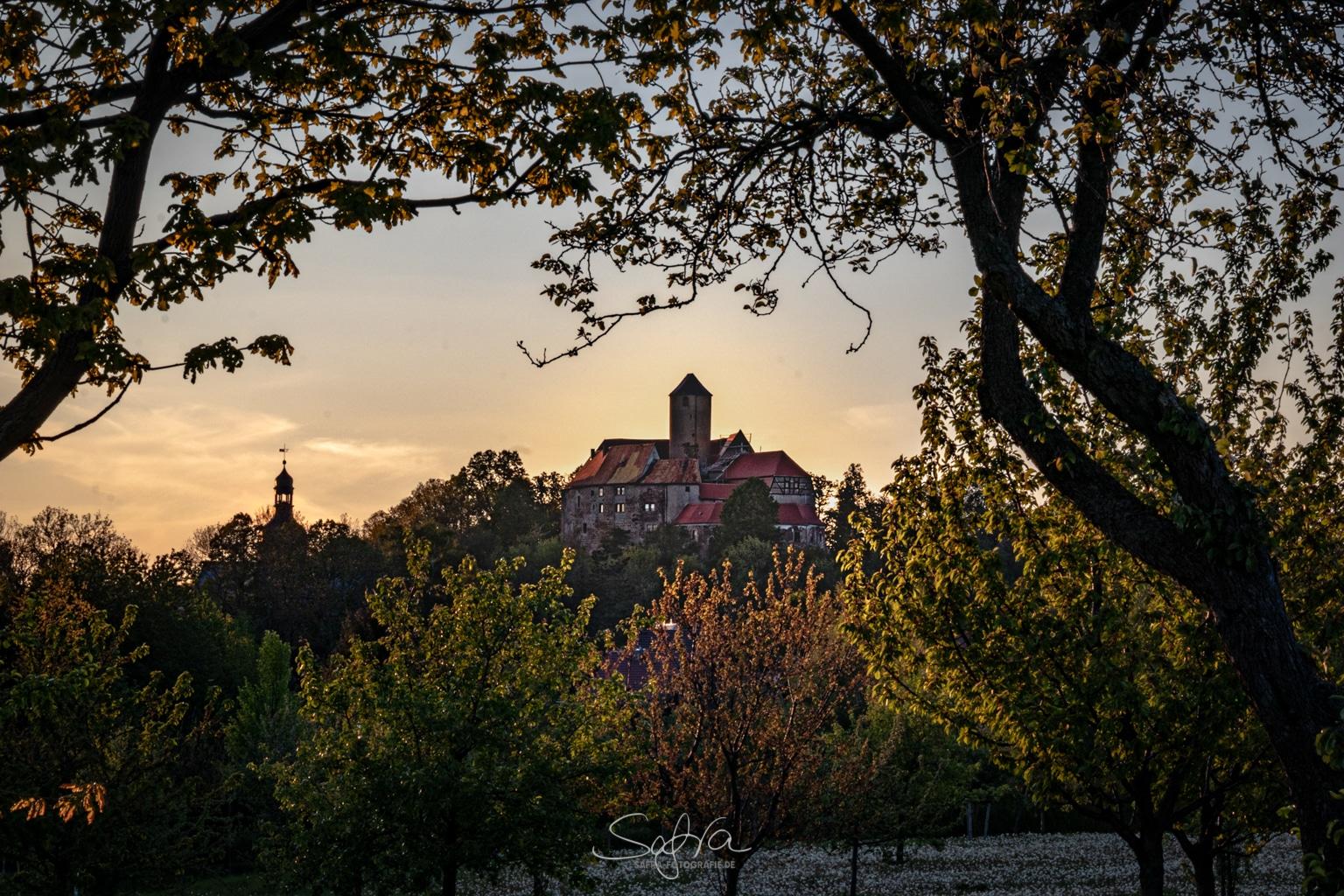 Schönfels, Burg über Obstbäumen